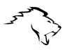 08 lions icon1